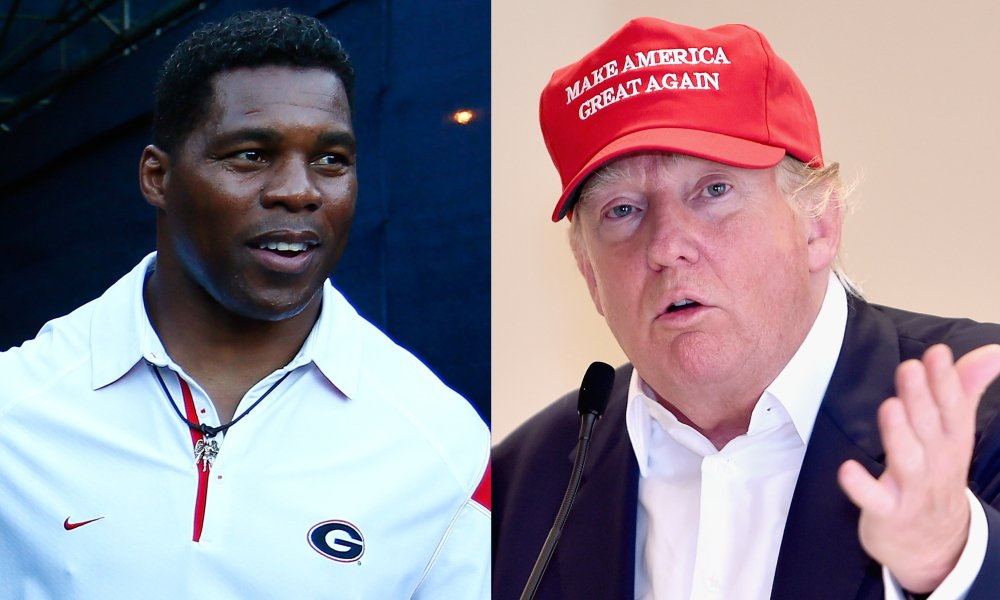 Dirtbag RINOs Thune and Cornyn Urge Trump Favorite Herschel Walker Not to Run for Some Reason When He Is a Shoo-in to Win Georgia Senate Seat