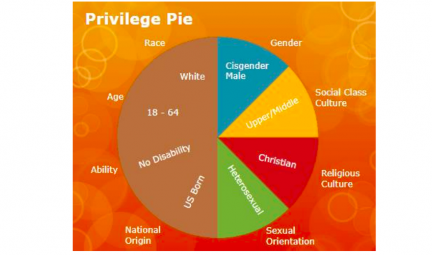School District Reportedly Hired A Consultant To Teach The 'Privilege Pie' Chart And A 'Pyramid Of White Supremacy' • CDN